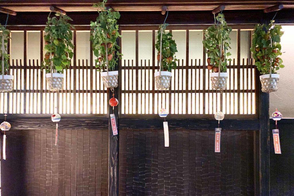 東京,神楽坂,新宿,飯田橋,東京note,デート,会食,飲み会,個室,和食,京都風,うどんすき,鳥茶屋