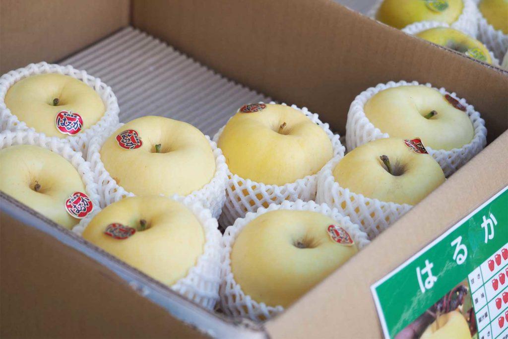 神楽坂,東京,つがる市,青森,物産市,毘沙門天,善國寺,りんご